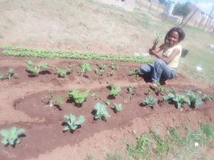 In den Gärten und auf den Feldern ...